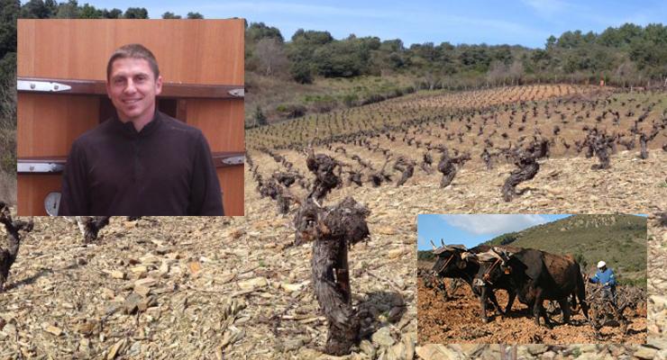 Grégory Pérez: El Trabajo  en la Viña