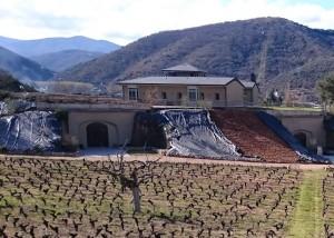 Noticias de vino - Dominio de Los Cerezos (II)