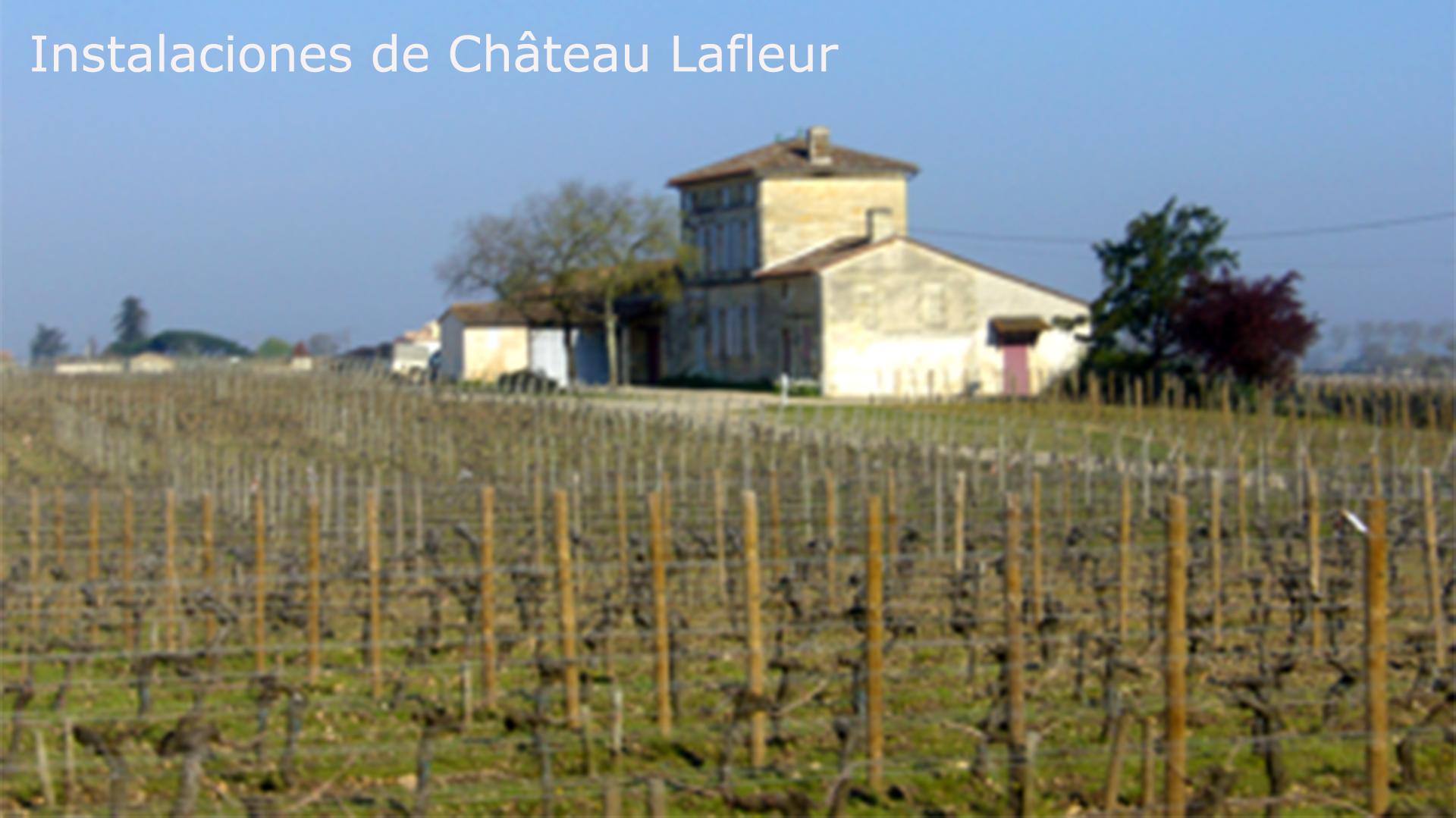 Château Lafleur. Uno de los mejores vinos del mundo.