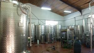 La Bodega de Alboloduy: Área de vinificación