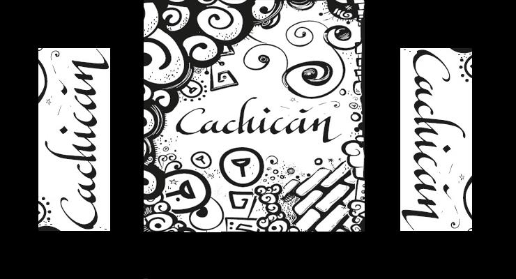 Cachicán: Un Proyecto de Crowdfunding