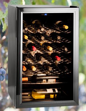 Vinotecas. Conservación de los vinos.