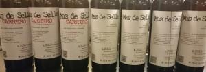 Imagen cata de vinos Mas de Sella. Ejemplo de cata divulgativa