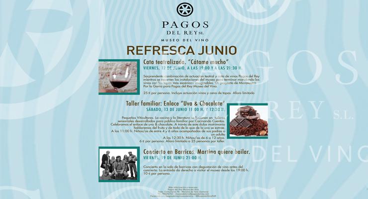 Museo del vino de Pagos del Rey - VINOS DIFERENTES