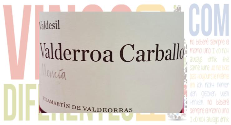 Valderroa Carballo 2011. Bodega Valdesil.