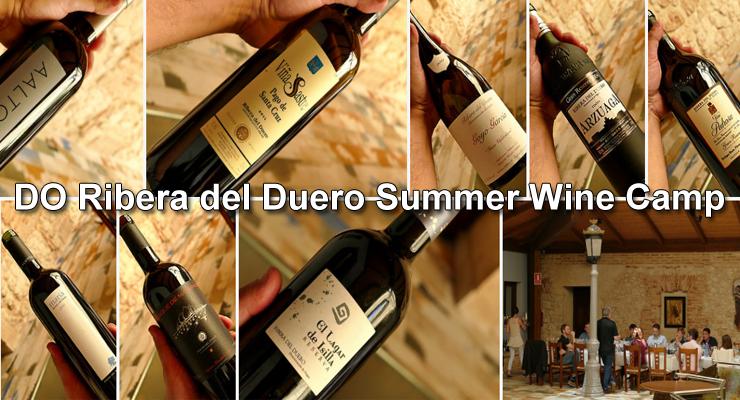 DO Ribera del Duero, Summer Wine Camp. - VINOS DIFERENTES