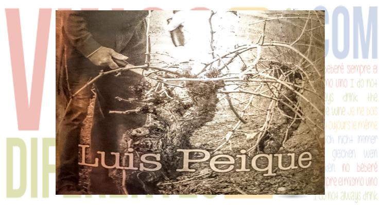 Luis Peique 2009. Un poderoso vino berciano.
