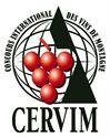 imagen del concurso internacional Cervim