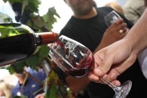 Foto Elciego, próxima parada de la fiesta de la vendimia de Rioja Alavesa