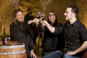 Ruta del Vino de Rioja Alavesa cuenta ya con 7.733 seguidores en Twitter
