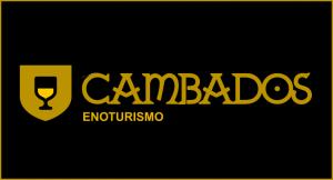 www.cambadosenoturismo.com