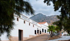 Imagen. Enoturismo Ruta del Vino Ribera del Guadiana