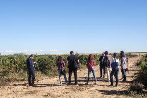 Día Europeo del Enoturismo en Rueda.