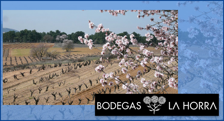 Bodegas - VINOS DIFERENTES