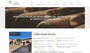Imagen del nuevo espacio  web de ICSURO.