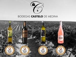 Imagen. Los vinos de Bodegas Castelo de Medina obtienen cuatro Medallas de Bronce