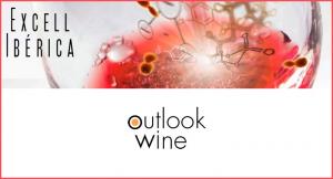 """Imagen de Excell Ibérica y Outlook Wine. Presentan los resultados del segundo estudio científico realizado a escala internacional sobre la percepción de """"mineralidad"""" en los vinos"""
