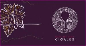 Tierra del Cigales. Entrega de premios. Ruta del Vino Cigales