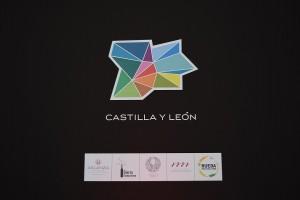 Imagen. Las cinco Rutas del Vino de Castilla y León en Intur 2015