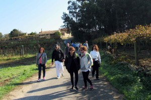 Imagen. Ruta de senderismo entre viñedos organizada por la Ruta do Viño Rías Baixas