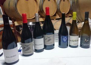Imagen. Gama de vinos elaborados por la Bodega Luz Divina