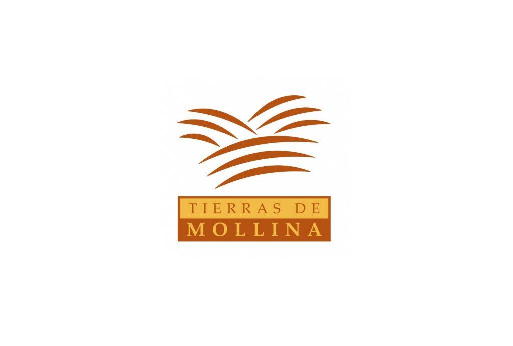 Tierras de Molina en el Stand Sabor a Málaga. - VINOS DIFERENTES