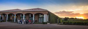 Imagen. Bodegas Torres promociona sus visitas y experiencias enoturísticas en FITUR
