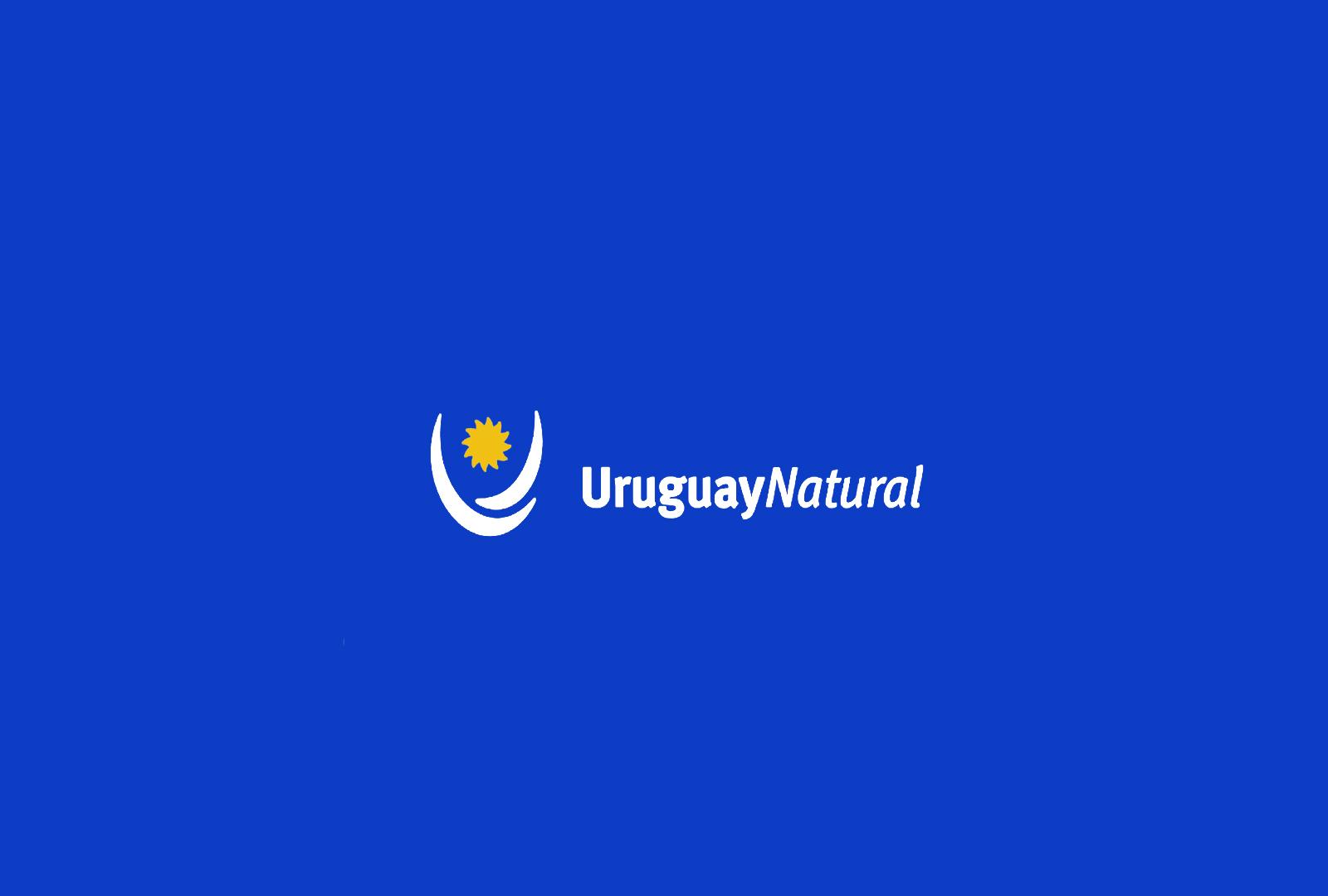 Uruguay promociona sus vinos tannat.
