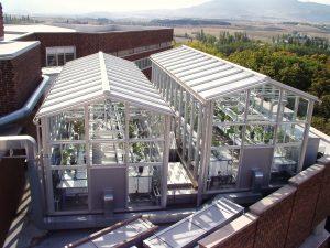 Investigación y Ciencia para minimizar los efectos del cambio climático en la variedad Tempranillo
