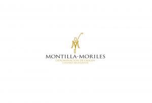 """Ciclo de Conferencias """"Montilla-Moriles, en Clave de Futuro"""""""