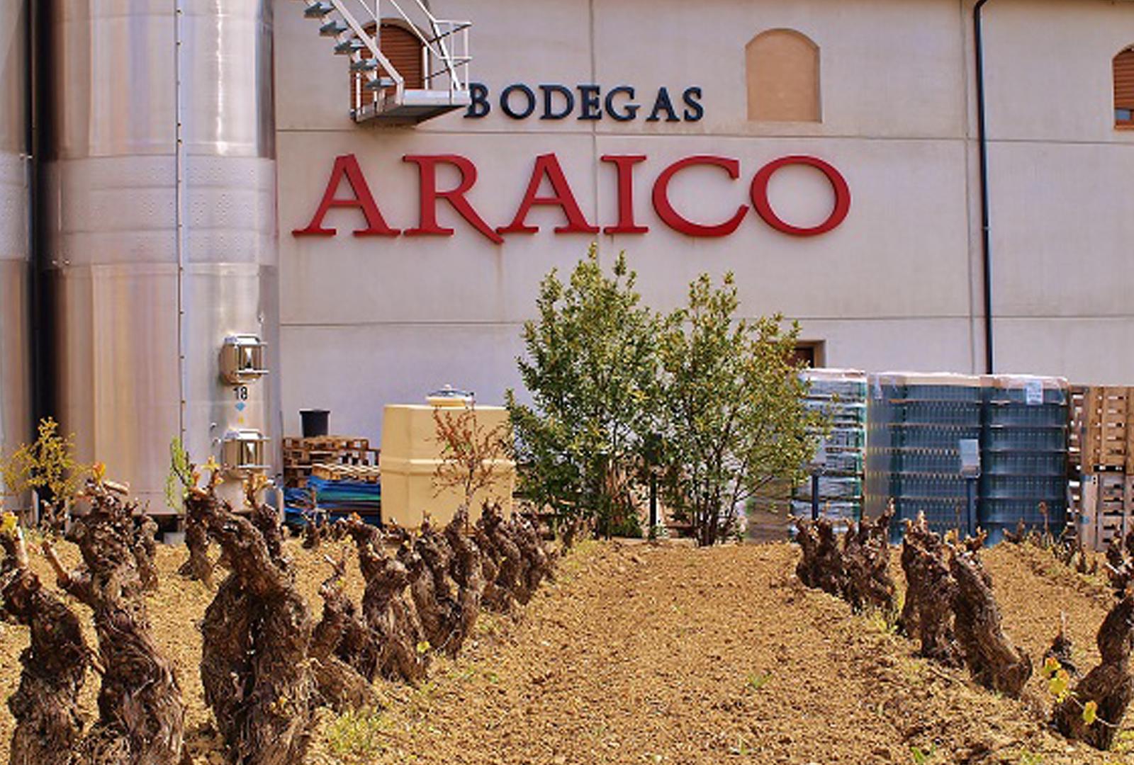 Bodegas Araico presenta su vino de autor.