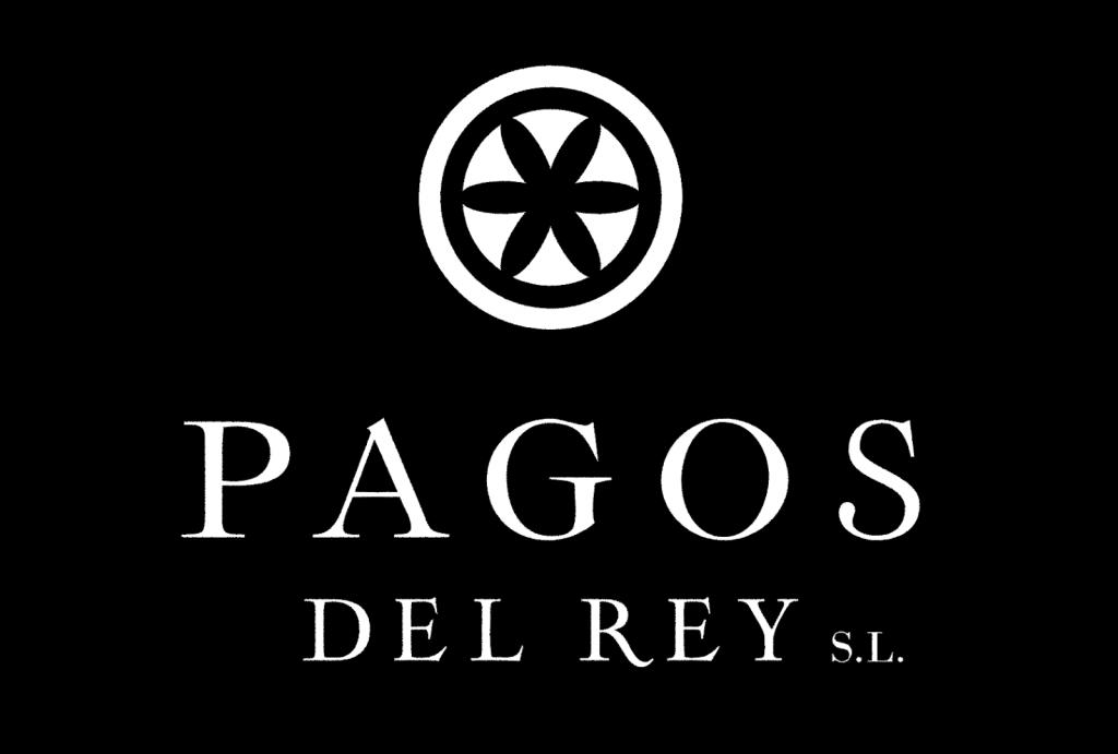 Soleá Morente en la sala de barricas de Pagos del Rey Museo del Vino. - VINOS DIFERENTES