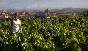 Entre viñedos y murallas, la nueva ruta medieval que une Laguardia y Artziniega.