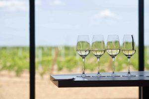 Las Rutas del Vino de Cigales y Rueda organizan en Madrid una Feria de Enoturismo