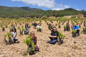 Periodistas y sumilleres durante una de sus visitas a los viñedos de la DOP Cariñena