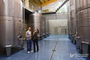 Récord de visitantes de la Ruta do Viño Rías Baixas