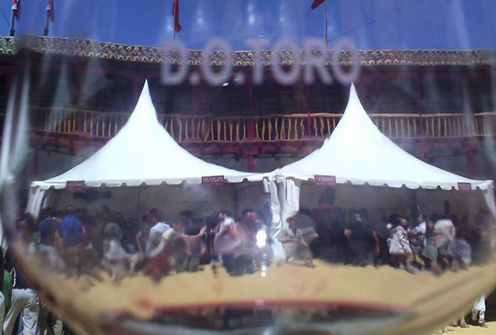 Toro (Zamora) se prepara para vivir su Feria del Vino.