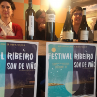 III Festival Ribeiro Son de Vino