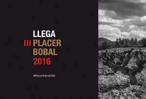 Salon Placer Bobal 2016