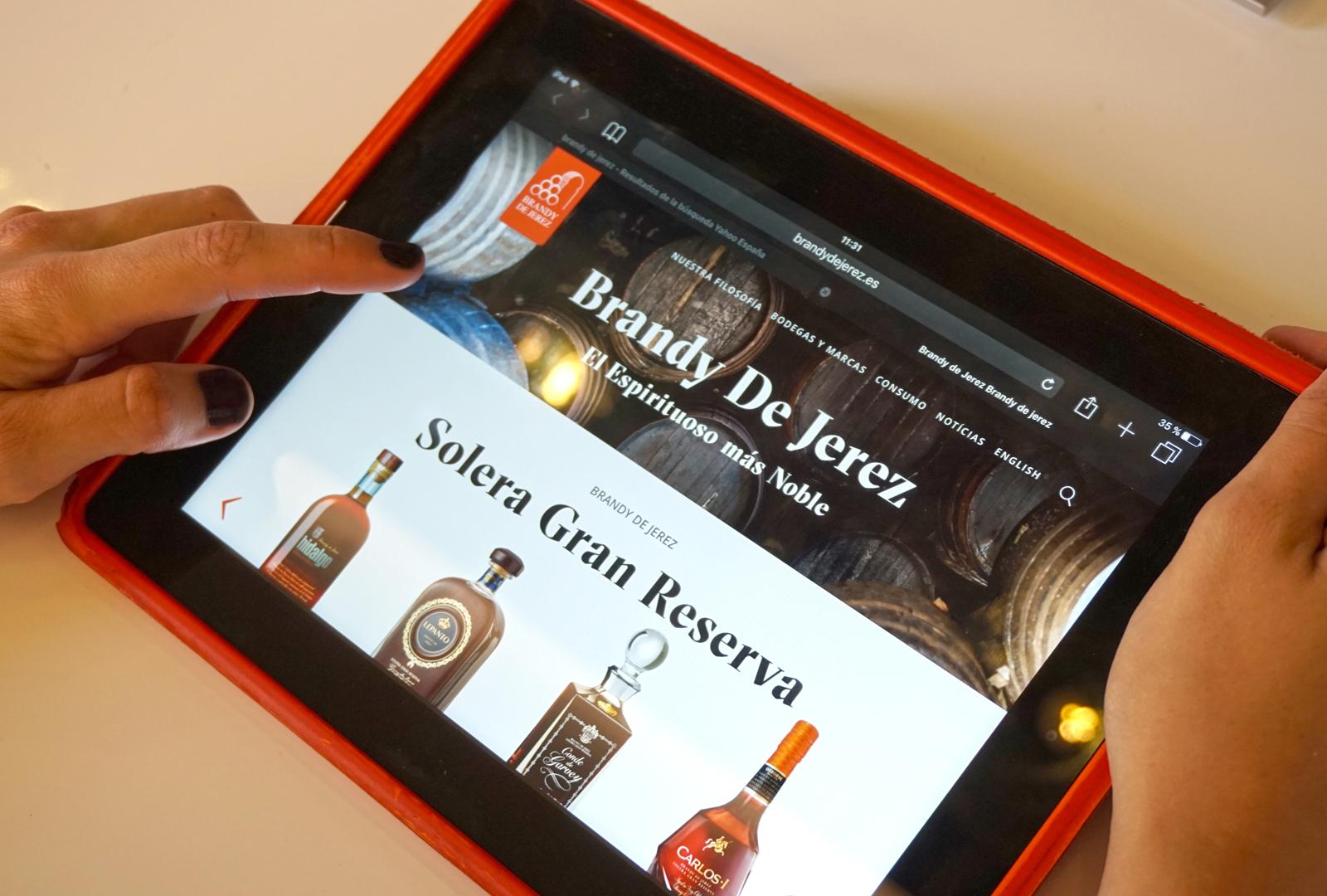 Brandy de Jerez nueva página web.