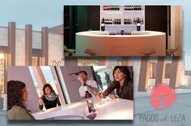 Wine Bar de Bodegas Pagos de Leza