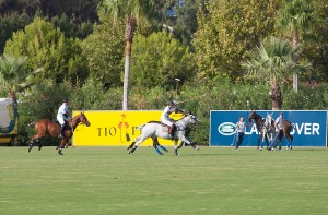 tio pepe polo club sotogrande_2