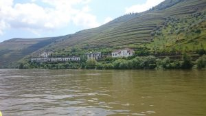 Imagen. Viñedos de Oporto a la ribera del Douro (Portugal).