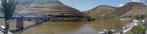 Imagen. Panorámica de los viñedos en verano en Pinhao -Valle del Douro- (Portugal).