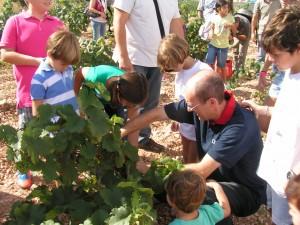 Bodegas Luzón celebra las V jornadas de Vendimia abierta