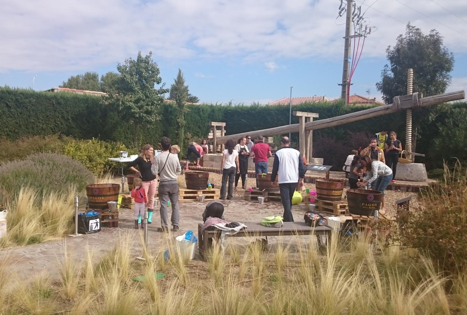 Pagos del Rey Museo del Vino presenta: A por Uvas