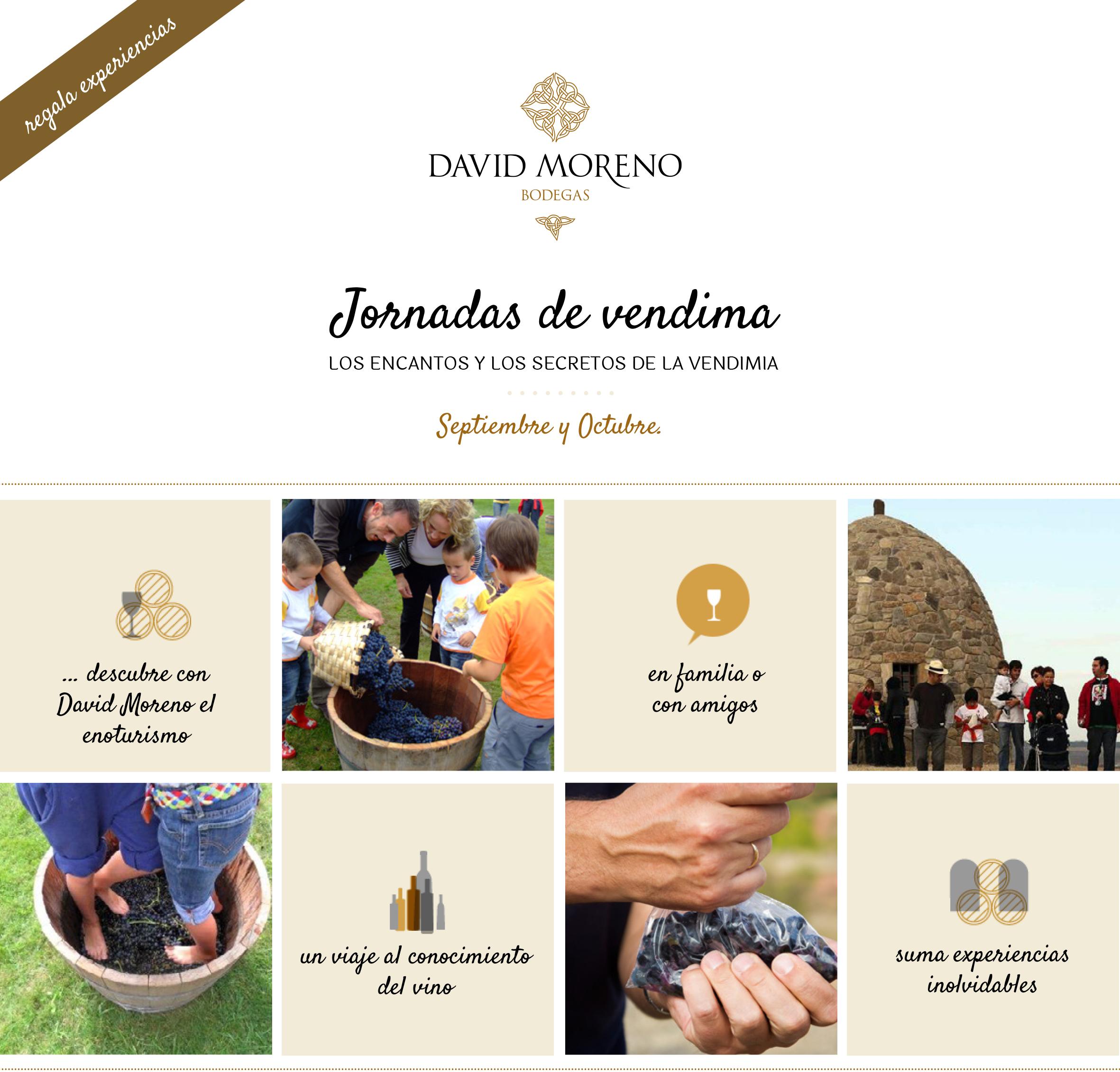 Jornadas de vendimia en Bodegas David Moreno. - Vinos tintos ...