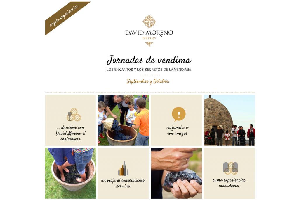 Jornadas de vendimia en Bodegas David Moreno. - VINOS DIFERENTES