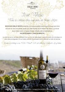Tour Viñedo: Visita los rincones más especiales de Emilio Moro en 4x4
