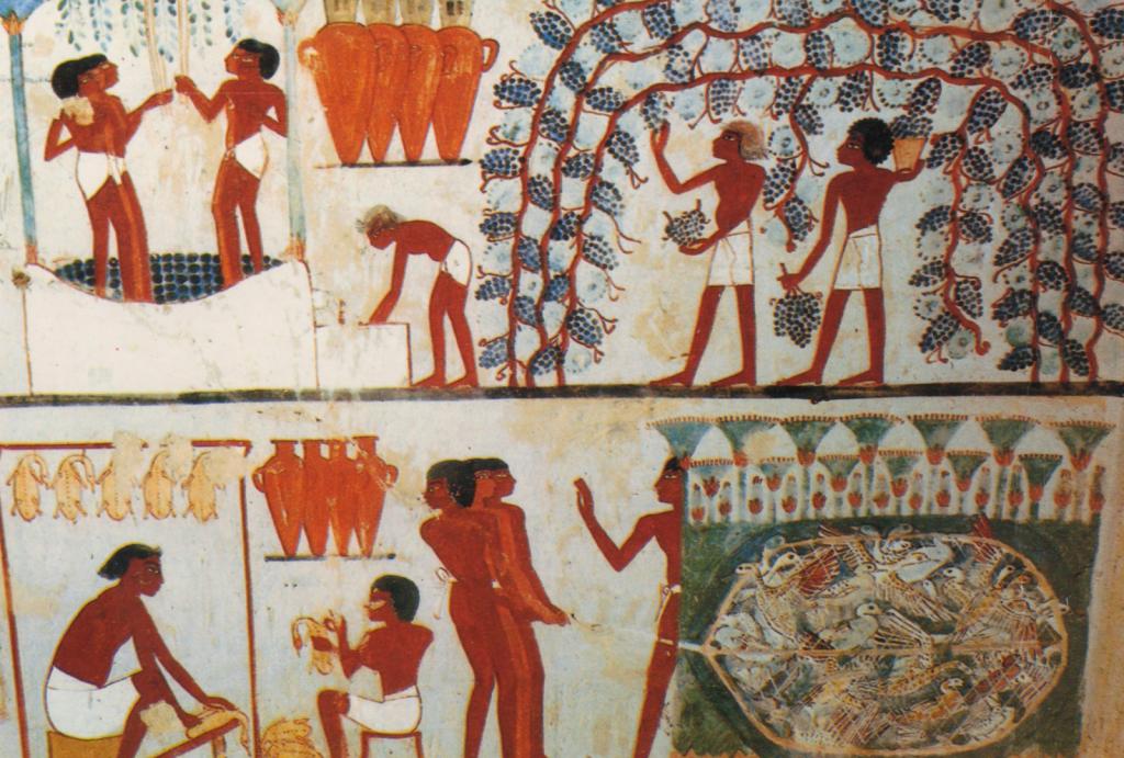 Historia del Vino: La Edad Antigua. - VINOS DIFERENTES